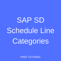 SAP SD Schedule Line Categories