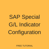 SAP Special G/L Indicator Configuration
