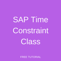 SAP Time Constraint Class