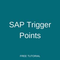 SAP Trigger Points