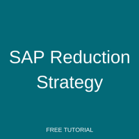 SAP Reduction Strategy