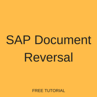 SAP Document Reversal