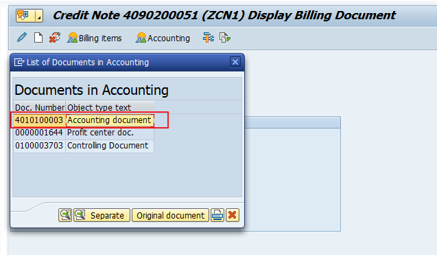 Double Click on the Accounting Document Number