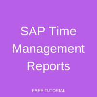 SAP Time Management Reports