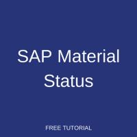 SAP Material Status