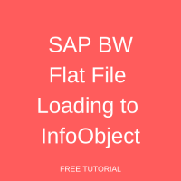 SAP BW Flat File Loading to InfoObject