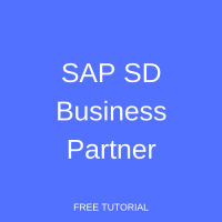 SAP SD Business Partner