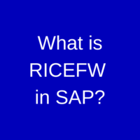 What is RICEFW in SAP?