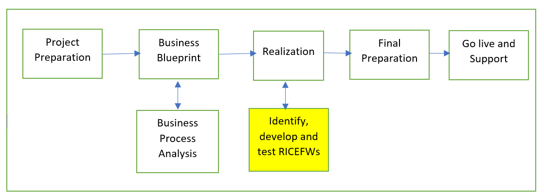 Significance of RICEFW in the SAP Project